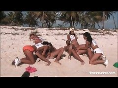Orgy exceeding a granulated beach thither sexy sluts